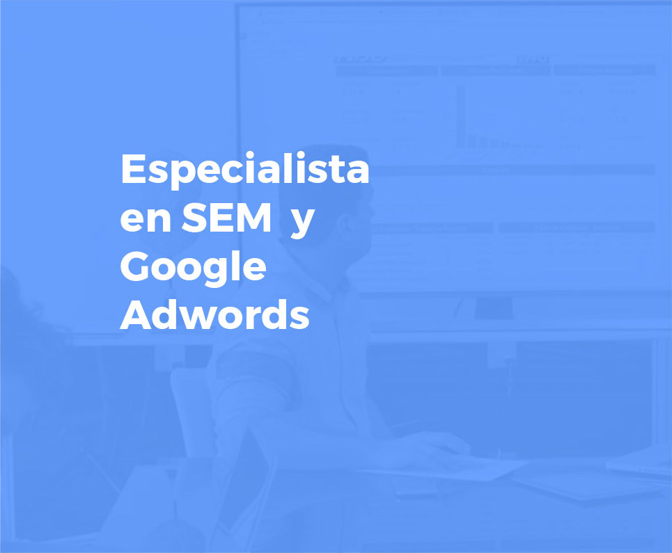 especialista sem y google adwords